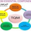 مدیریت کیفیت جامع TQMدر ایمنی